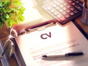 Izjemno pomemben del življenjepisa je navajanje pridobljenih delovnih izkušenj.